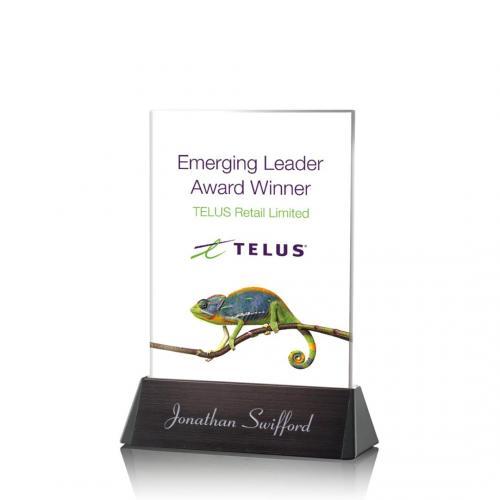 Sierra Rectangle Award - VividPrint™