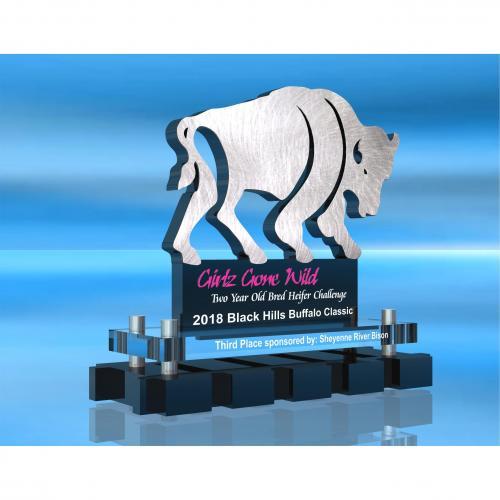 Dakota Territory Award