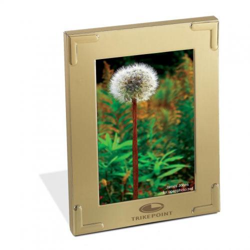 Corona Gold Picture Frame Award