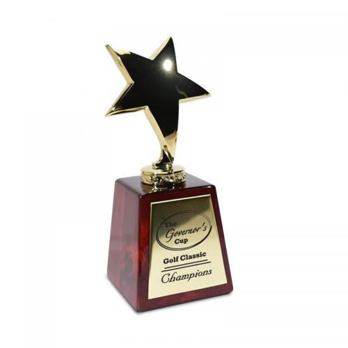 Starring Pierrot Star Recognition Award on Wood Base