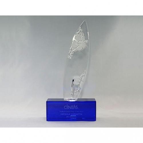 Cintas Surfboard Award