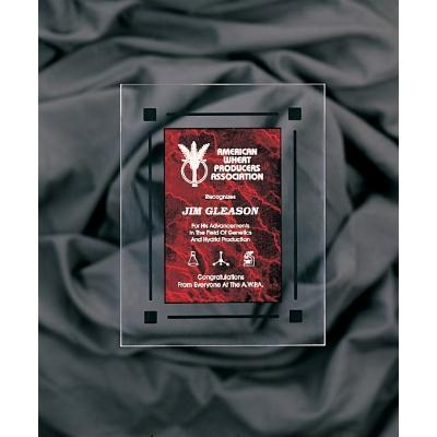 Red Marble & Clear Acrylic Rectangle Plaque with Black Border