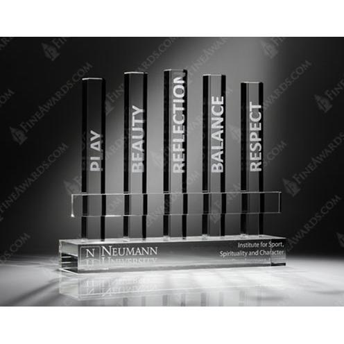 Neumann University Custom Award