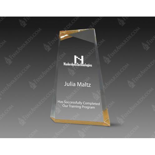 Gold Wedge Clear Acrylic Award