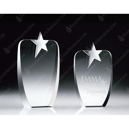 Metal & Optical Crystal Absolute Star Award